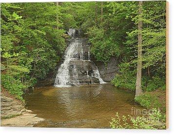 Moores Creek Falls Wood Print