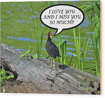 Moorhen Miss You Card Wood Print by Al Powell Photography USA