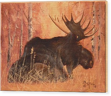 Moose At Rest Wood Print
