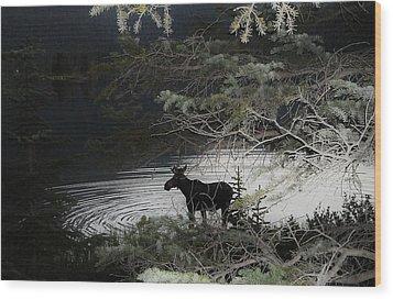 Moose Has Happy Hour Wood Print