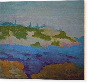 Wood Print featuring the painting Moose Island - Schoodic Peninsula by Francine Frank