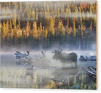 Moose Lake Wood Print by Leland D Howard