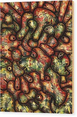 Mop By Rafi Talby Wood Print by Rafi Talby