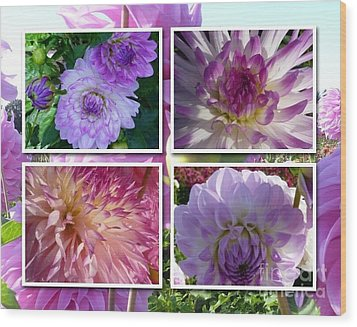 More Dahlias Wood Print by Susan Garren