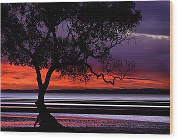 Moreton Bay View Wood Print by Robert Charity