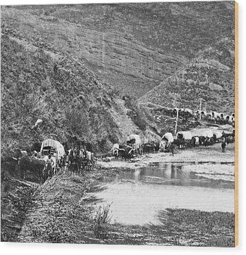 Mormon Emigrant Conestoga Caravan 1879 - To Utah Wood Print by Daniel Hagerman