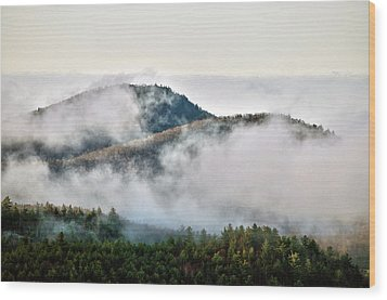 Wood Print featuring the photograph Morning After The Storm by Allen Carroll