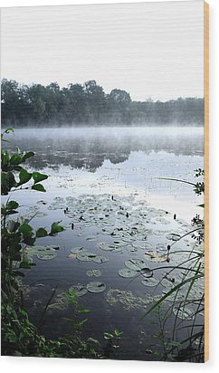Morning At Lake Wood Print by Willo Breisacher