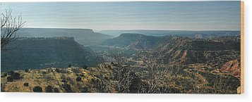 Wood Print featuring the photograph Morning At Palo Duro by Rod Seel