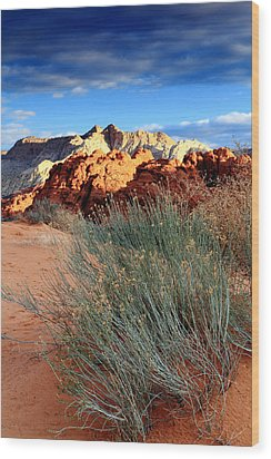 Morning At Snow Canyon State Park Wood Print by Eric Foltz