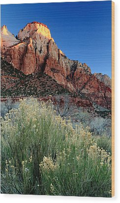 Morning At Zion National Park Wood Print by Eric Foltz