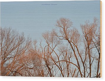 Morning Coloured In Fall Wood Print by Sonali Gangane