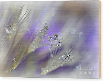 Morning Dew Wood Print by Lila Fisher-Wenzel