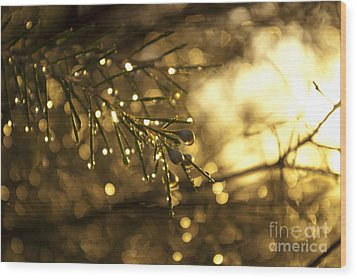 Wood Print featuring the digital art Morning Dew by Serene Maisey
