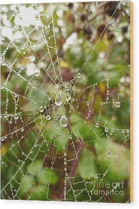 Wood Print featuring the photograph Morning Dew by Vicki Spindler