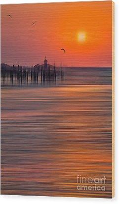 Morning Flight - A Tranquil Moments Landscape Wood Print by Dan Carmichael
