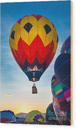 Morning Flight Wood Print by Inge Johnsson