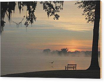 Morning Flight Wood Print by Leslie Kirk