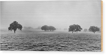 Morning Fog Wood Print by Howard Salmon