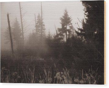 Morning Fog In The Smoky Mountains Wood Print by Dan Sproul