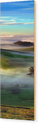 Morning Fog Over Two Rock Valley Diptych Wood Print by Wernher Krutein