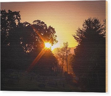 Morning Glare Wood Print by Robert J Andler