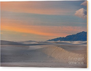 Morning Glory In White Sands Wood Print by Sandra Bronstein