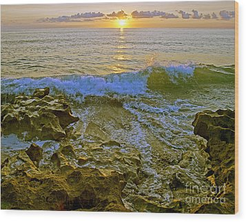Morning Glory Wood Print by Larry Nieland