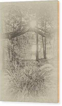 Wood Print featuring the photograph Morning Glory by Margaret Palmer