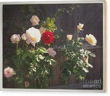 Wood Print featuring the photograph Morning Glory by Vonda Lawson-Rosa