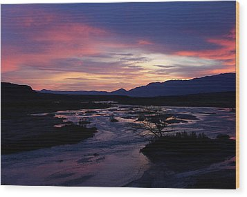 Wood Print featuring the photograph Morning Glow by Tammy Espino