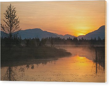 Wood Print featuring the photograph Morning Has Broken by Jack Bell