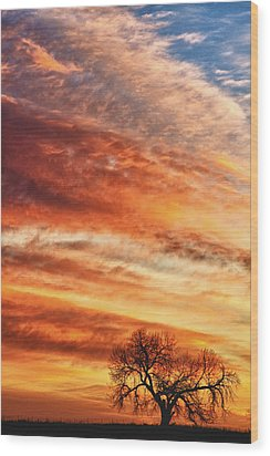 Morning Has Broken Wood Print by James BO  Insogna