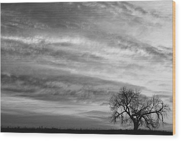 Morning Has Broken Like The First Dawning Landscape Bw Wood Print by James BO  Insogna