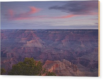 Morning Hike Into The Grand Canyon Wood Print by Andrew Soundarajan