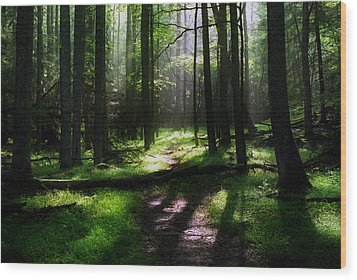Morning In Cades Cove Wood Print by Greg and Chrystal Mimbs