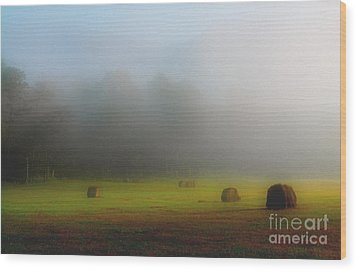 Morning In The Cove Wood Print