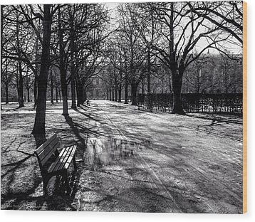 Wood Print featuring the photograph Morning In The Hofgarten by Ross Henton