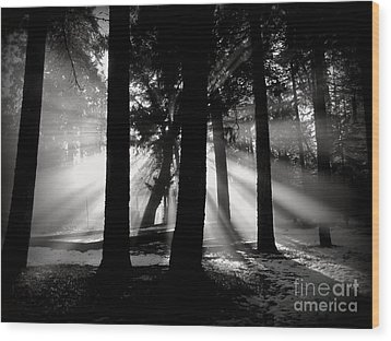 Wood Print featuring the photograph Morning by Irina Hays