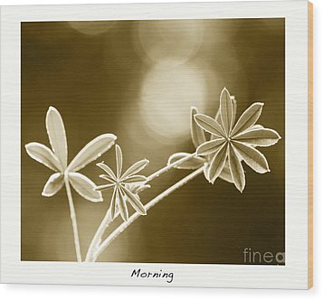 Morning Wood Print by Artist and Photographer Laura Wrede