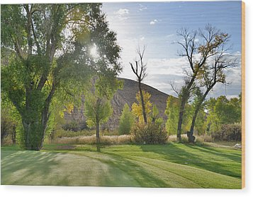 Morning Light At The Rolling Green Cc Wood Print by Eric Nielsen