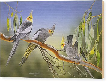 Morning Light - Cockatiels Wood Print by Frances McMahon