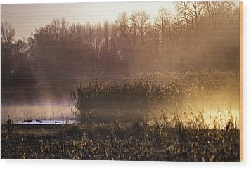 Morning Light Wood Print by Skip Willits