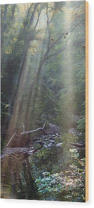 Morning Light Wood Print by Tom Mc Nemar