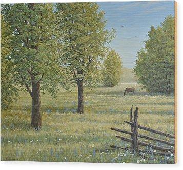 Morning Meadow Wood Print by Jake Vandenbrink