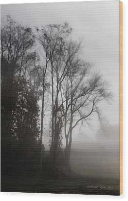 Morning Mist Wood Print by Aleksander Rotner