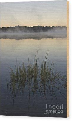 Morning Mist At Sunrise Wood Print by David Gordon