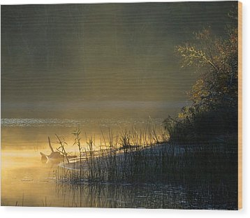 Wood Print featuring the photograph Morning Mist by Dianne Cowen