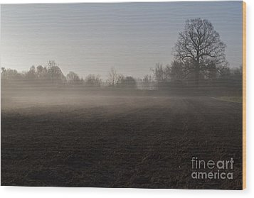 Wood Print featuring the photograph Morning Mist  by Gary Bridger