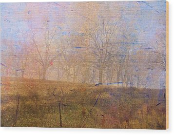 Morning Mist Wood Print by Jan Amiss Photography